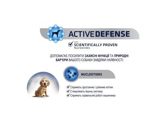 Advance (Эдванс) Dog Medium Adult - корм для взрослых собак средних пород (с курицей и рисом)