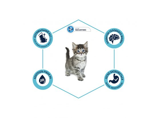 Advance (Эдванс) Kitten - корм для котят от 2 до 12 месяцев (с курицей и рисом)