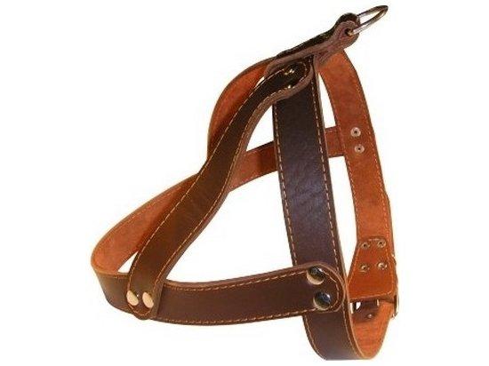 Collar Шлея двойная (для бультерьера и стаффа) (СКИДКА 30% - РАСПРОДАЖА)
