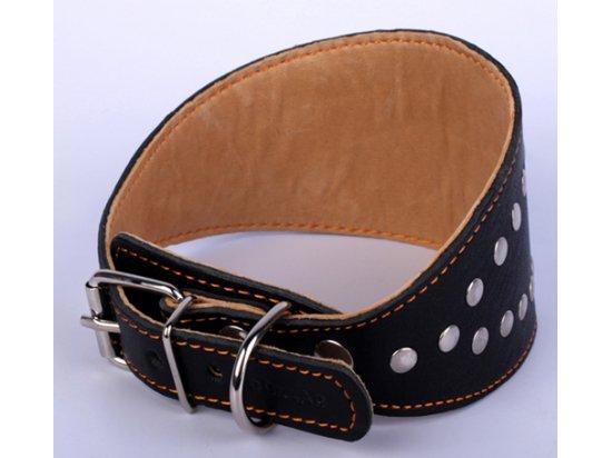 Collar БОРЗЯТНИК - Кожаный ошейник для собак с заклепками