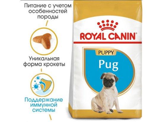 Royal Canin PUG PUPPY (МОПС ПАППИ) корм для щенков до 10 месяцев