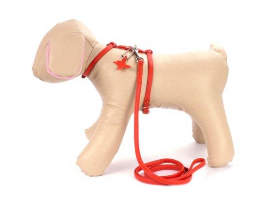 Collar Glamour Шлея с поводком для кошек и собак малых пород