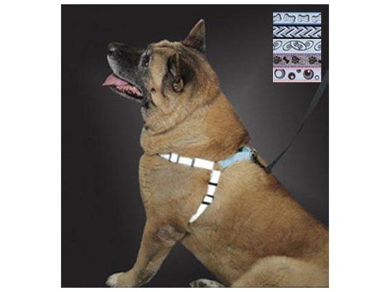 Coastal LAZER светоотражающая шлея для собак