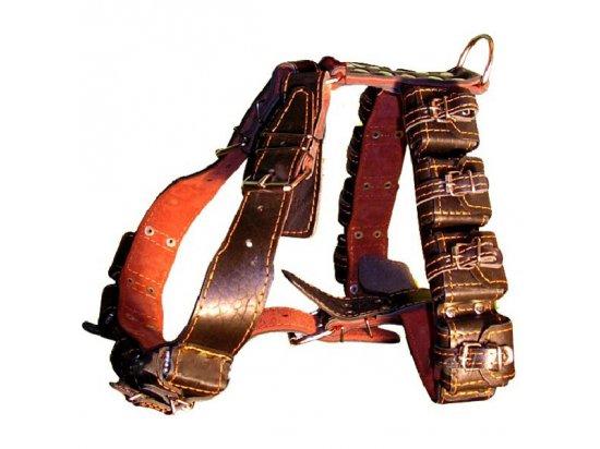 Collar Шлея с утяжелителями для собак
