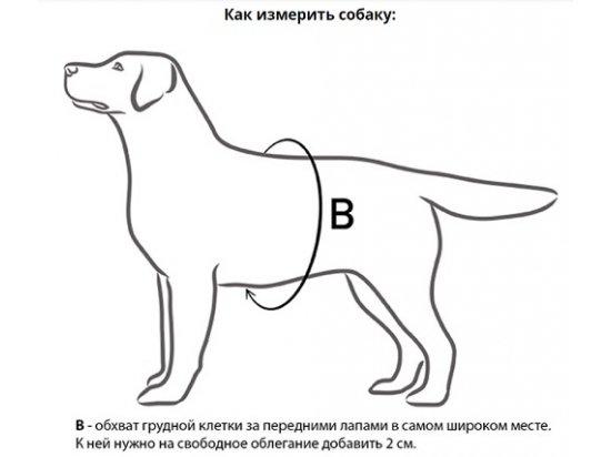 Collar POLICE Регулируемая шлея для собак ЧЕРНАЯ