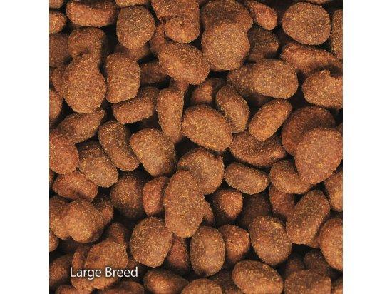 Orijen (Ориджен) PUPPY LARGE (ПАППИ ЛАРДЖ) корм для щенков крупных пород