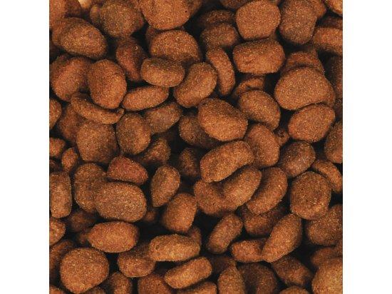 Orijen (Ориджен) SENIOR (СЕНЬОР) корм для стареющих собак