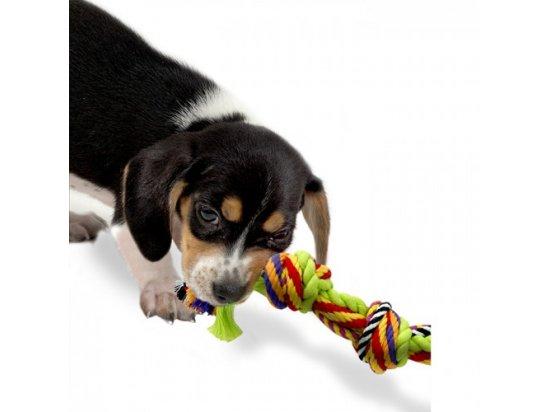 Petstages (Петстейджес) Mini Multi Rope Chew - Цветной канат с узлами - Игрушка для мелких собак, длина 20 см