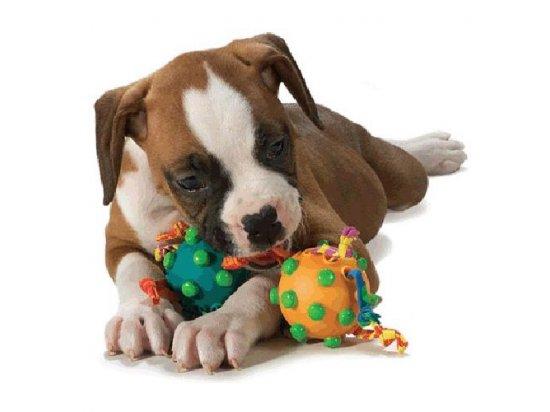 PETSTAGES Twin Pull - Два мяча на канате - игрушка для собак, диаметр 6,5 см
