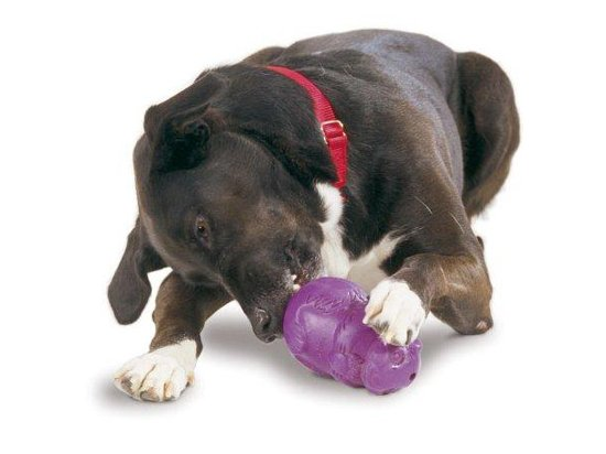 Premier SQUIRREL DUDE (Сквирелл дуд) Cверхпрочная игрушка-лакомство для собак