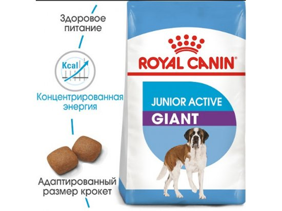 Royal Canin GIANT JUNIOR ACTIVE (ЮНИОРЫ ГИГАНТСКИХ ПОРОД АКТИВ) корм для щенков от 8-24 месяцев