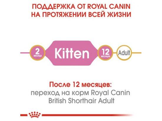 Royal Canin Kitten BRITISH SHORTHAIR (БРИТАНСКАЯ КОРОТКОШЕРСТНАЯ КИТТЕН) корм для котят до 12 месяцев