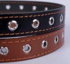 Collar (Коллар) - БЕЗРАЗМЕРНЫЙ кожаный ошейник для собак одинарный (0295)