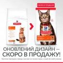 Hill's Science Plan Adult Optimal Care корм для кошек с ягненком