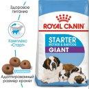Royal Canin GIANT STARTER MOTHER & BABYDOG корм для беременных и кормящих сук и щенков гигантских-пород