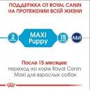 Royal Canin MAXI PUPPY корм для щенков крупных пород от 2 до 15 месяцев