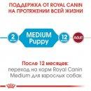 Royal Canin MEDIUM PUPPY корм для щенков средних пород от 2 до 12 месяцев