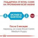 Royal Canin MEDIUM STARTER MOTHER & BABYDOG корм для беременных и кормящих сук и щенков средних пород
