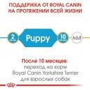 Royal Canin YORKSHIRE TERRIER PUPPY (ЙОРКШИР ТЕРЬЕР ПАППИ) корм для щенков до 10 месяцев