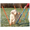Trixie Slalom (Трикси Слалом) - палки для тренировки ловкости собак (3206)