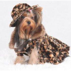 DoggyDolly КЛЕОПАТРА - пальто для собак (РАСПРОДАЖА - 30%)
