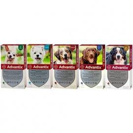 Bayer Advantix (Адвантикс) капли на холку от блох и клещей для собак 1 ПИПЕТКА