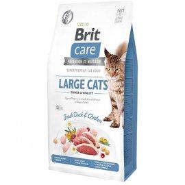 Brit Care GF LARGE POWER & VITALITY беззерновой корм для кошек крупных пород (курица и утка)