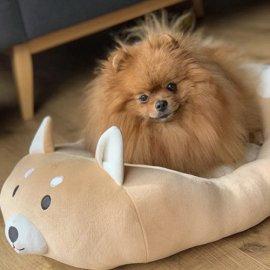 Croci FLUFFY CORGI (ПУШИСТЫЙ КОРГИ) лежак для собак и кошек