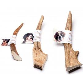 DogsRogs РОГ ЛОСЯ погрызушка для собак ТВЕРДЫЙ