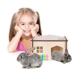 Aquael PET INN WOODEN HOUSE Домик - конструктор для грызунов