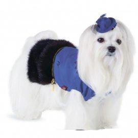 Pet Fashion ФРАНЧЕСКА жакет с мехом для собак
