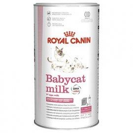 Royal Canin BABYCAT MILK (БЕБИКЕТ МИЛК) заменитель молока для котят