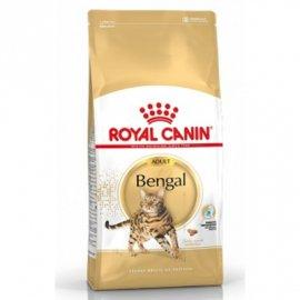 Royal Canin BENGAL ADULT (БЕНГАЛ ЭДАЛТ) корм для котов от 1 года