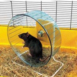 Savic Тренажер Колесо для хомяков и крыс ROLLY GIANT + STAND
