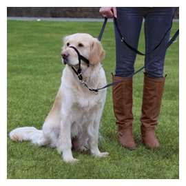 Trixie (Трикси) Недоуздок (тренировочный ошейник-уздечка) для собак